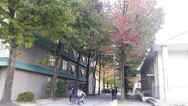 Một góc khu ký túc xá trường đại học Ehime Nhật Bản