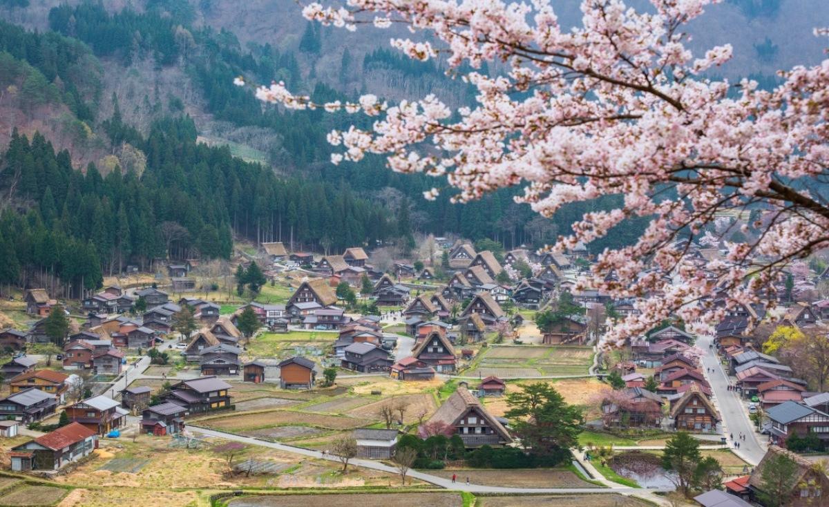 Du Học Nhật Bản Tại Gifu – Trung Tâm Của Xứ Sở Hoa Anh Đào