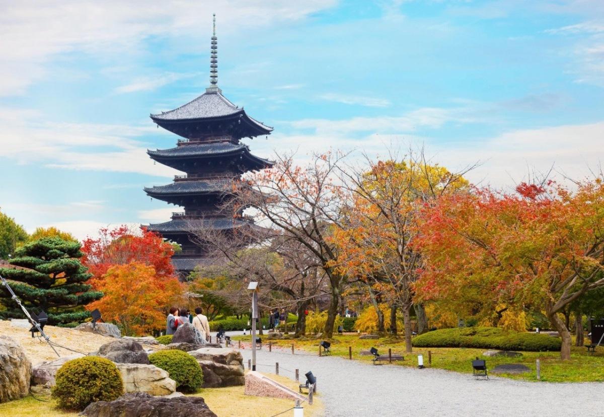 Du Học Nhật Bản Tại Kyoto – Cố Đô Cổ Kính Của Xứ Sở Hoa Anh Đào