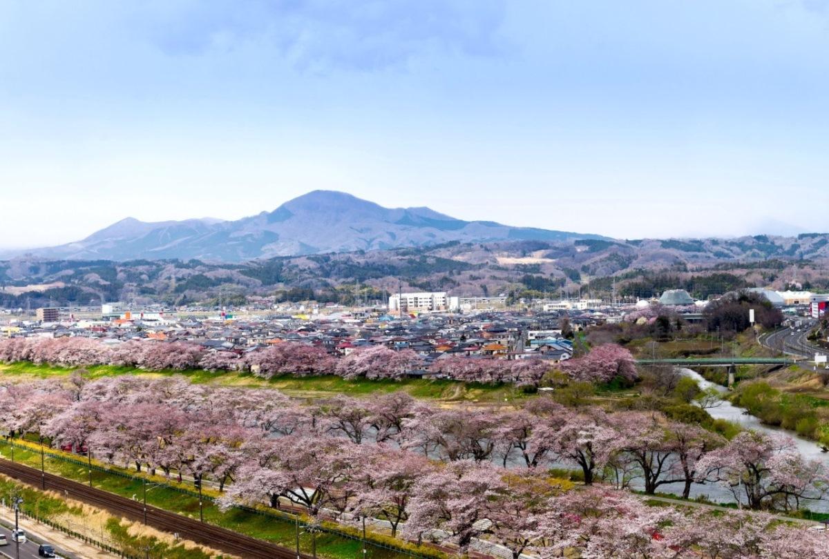 Du Học Nhật Bản Tại Sendai – Thành Phố Học Viện Xứ Sở Hoa Anh Đào