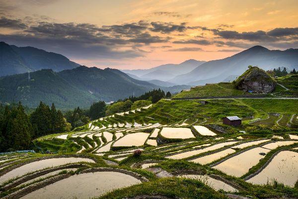Du học Nhật Bản ở Mie - Vùng đất có lịch sử lâu đời