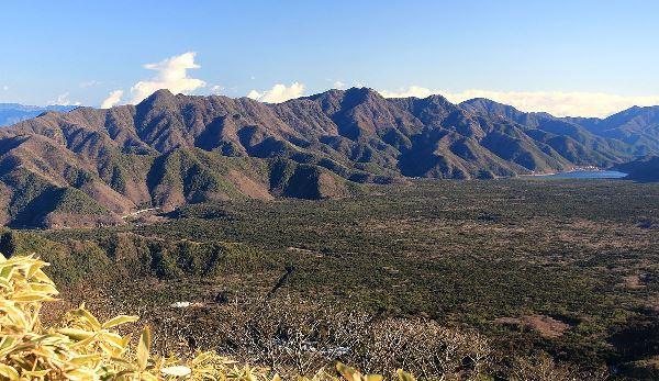 Khu rừng Aokigahara