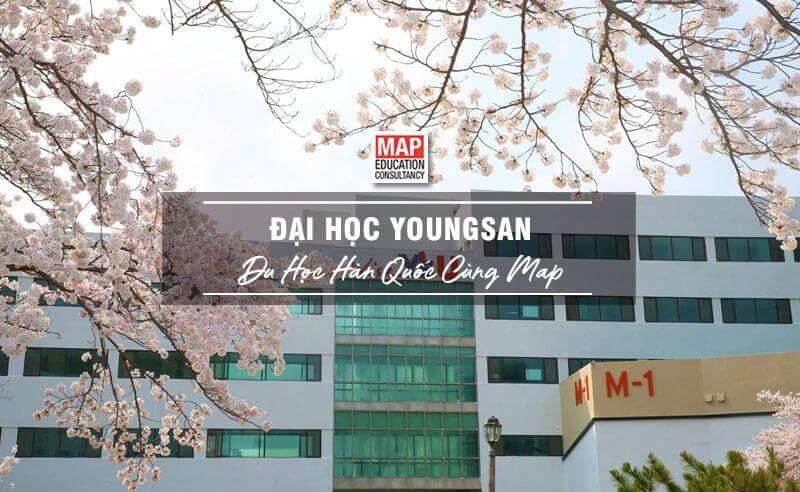 Đại Học Youngsan – Trường Thương Mại Quốc Tế Hàng Đầu Hàn Quốc