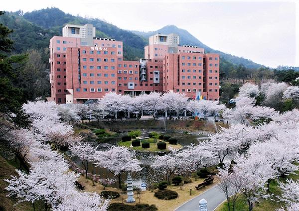 Ký túc xá trong khuôn viên trường đại học Dongshin Hàn Quốc