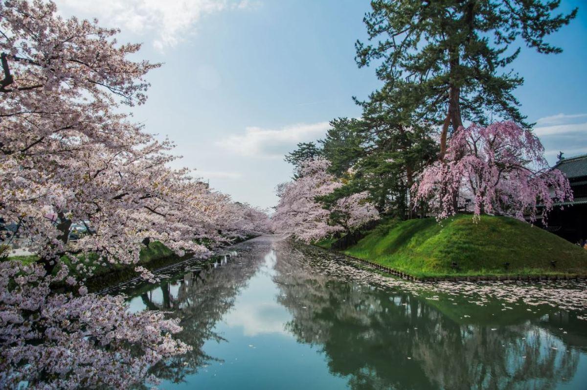 Du học Nhật Bản cùng MAP - Du học Nhật Bản tại Aomori