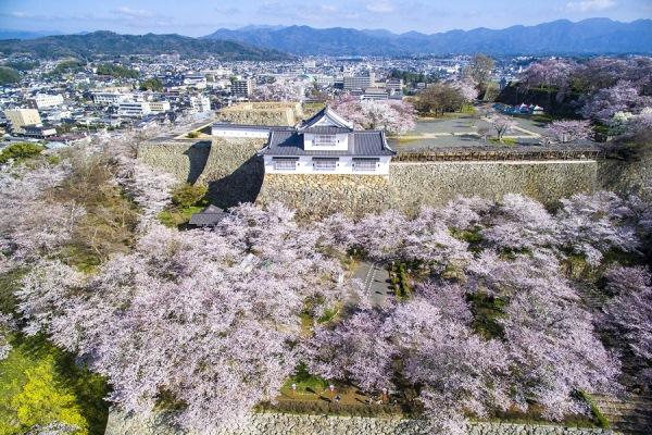 Thành Tsuyama
