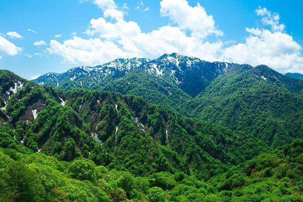 Vùng núi Shirakami Sanchi hùng vĩ