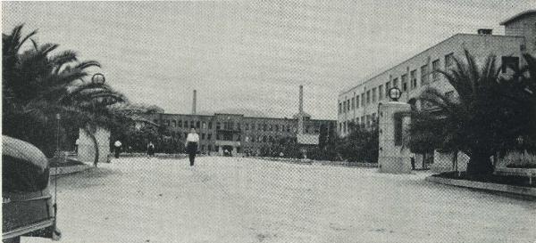 Trường đại học Hiroshima vào những năm 1950