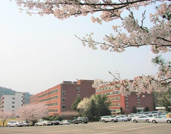 Học xá trường Hanlyo đẹp nên thơ vào mùa xuân