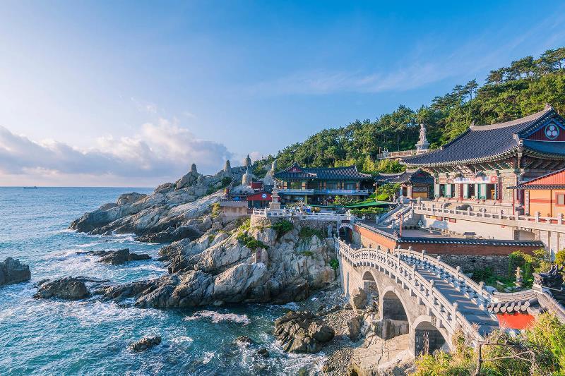 Du Học Hàn Quốc Giá Rẻ: Bí Quyết Học Rẻ & Sống Rẻ Tại Xứ Sở Kim Chi