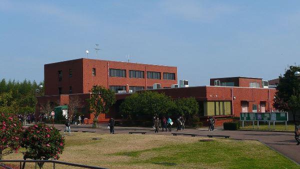 Cơ sở Kibana