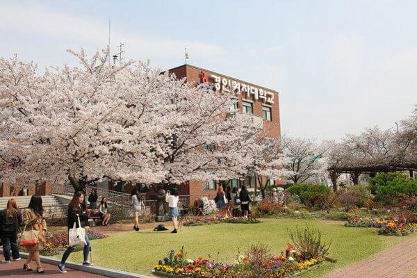Khuôn viên xanh của trường.