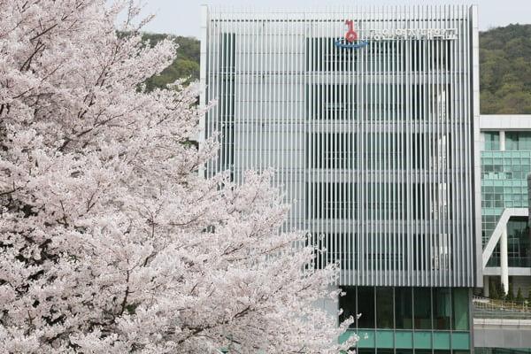 Một góc khác của trường đại học nữ Kyungin Hàn Quốc vào xuân.