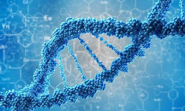 Công nghệ sinh học xuất hiện vào đầu thế kỉ 20
