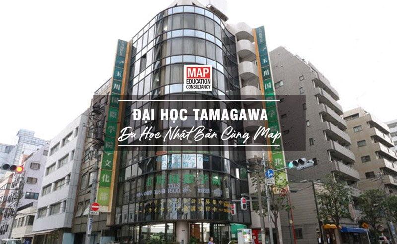 Đại Học Tamagawa Nhật Bản - Ngôi Trường Top 186 Tại Xứ Sở Hoa Anh Đào