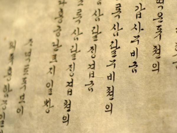 Học ngôn ngữ học tại Xứ sở Kim chi