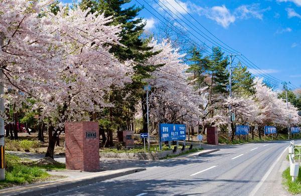 Aomori University hoạt động từ năm 1968