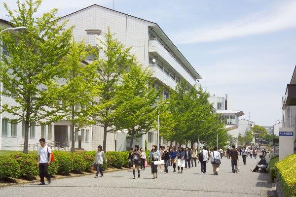 Cùng MAP tìm hiểu về những câu hỏi thường gặp nhất về đại học Iryo Sosei nhé!
