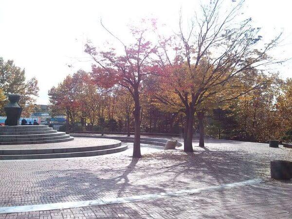 Khung cảnh Chongju National College of Science and Technology vào mùa thu