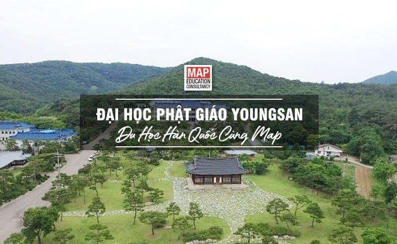 Đại học Phật Giáo Youngsan – TOP 5 Trường Phật Giáo Hàn Quốc